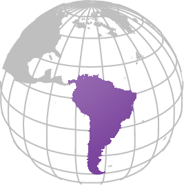 Cross Border Investment-Latin America